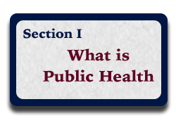 Section I: What is Public Health?